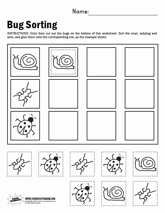 Sorting Worksheets for Preschoolers Kids Bug sorting Worksheet