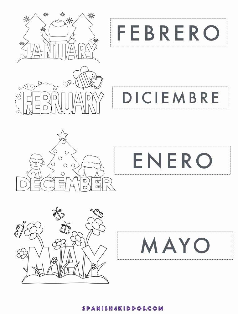 Spanish Worksheets for Preschoolers Free Printable Free Printable Of Spanish Months January February