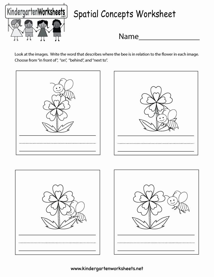 Spatial Concepts Worksheets for Preschoolers Best Of This is A Cute Spatial Concepts Worksheet for