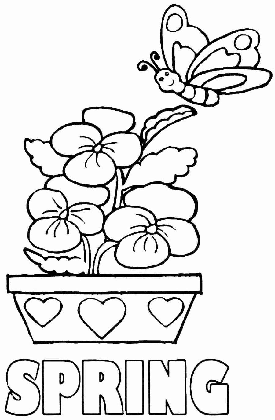 Spring Coloring Worksheets for Preschoolers Fresh Fabulous Spring Coloring Sheets for toddlers Picture