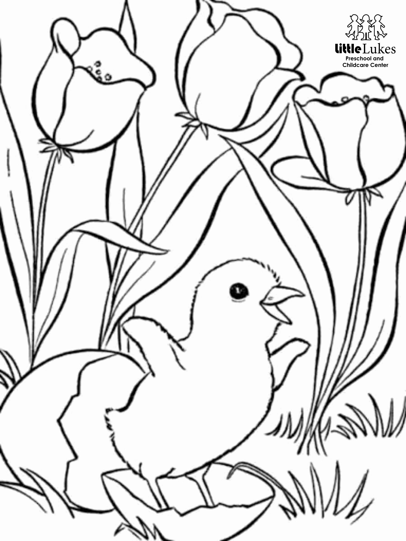 Spring Coloring Worksheets for Preschoolers New Spring Coloring Pages for Adults to Print and Color Easter