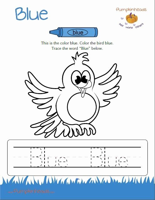 The Color Blue Worksheets for Preschoolers Ideas Page Not Found