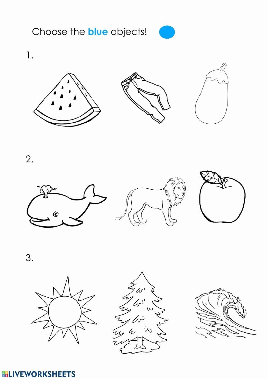 The Color Blue Worksheets for Preschoolers Lovely Blue Color Interactive Worksheet