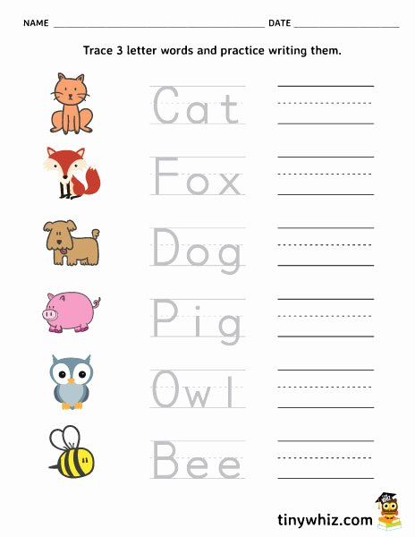 Three Letter Words Worksheets for Preschoolers Ideas Free Printable Trace and Write Letter Words Tiny Three