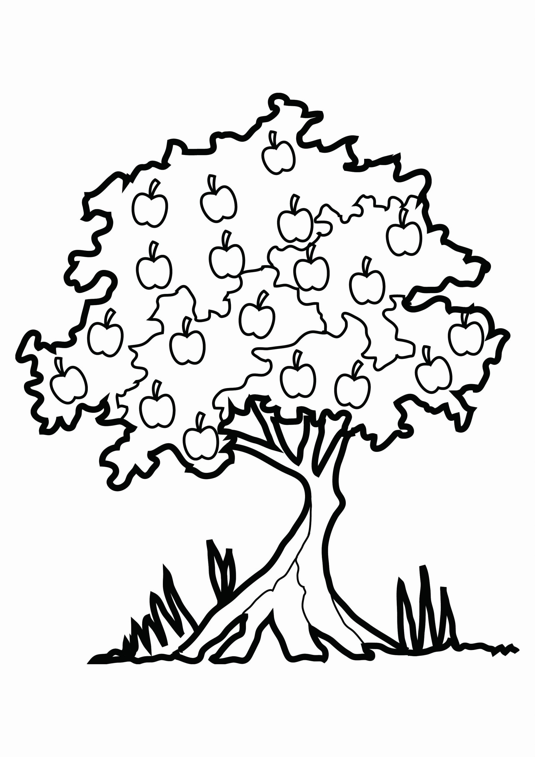 Tree Coloring Worksheets for Preschoolers Inspirational Free Printable Tree Coloring Pages for Kids