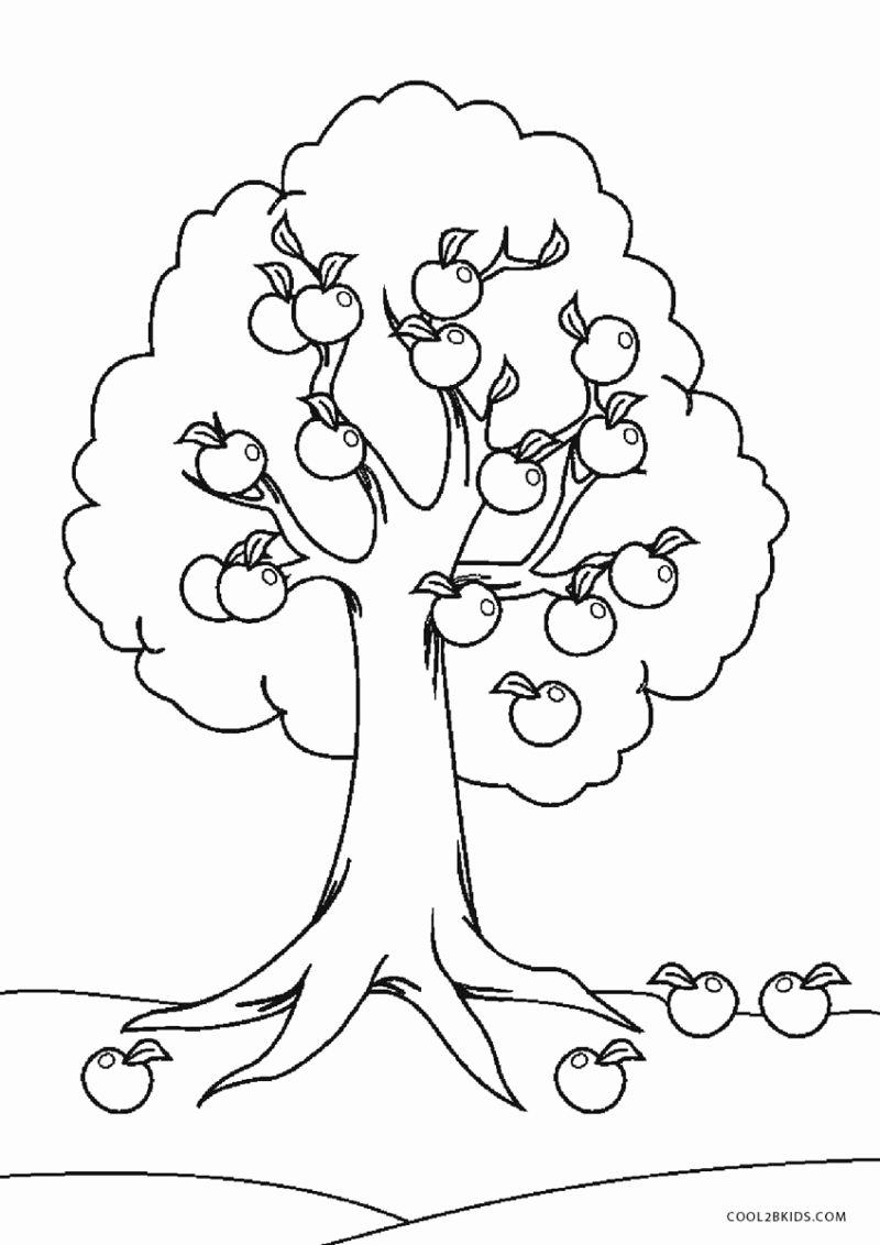 Tree Coloring Worksheets for Preschoolers Lovely Math Worksheet Coloring Printable Tree for Kids Worksheets