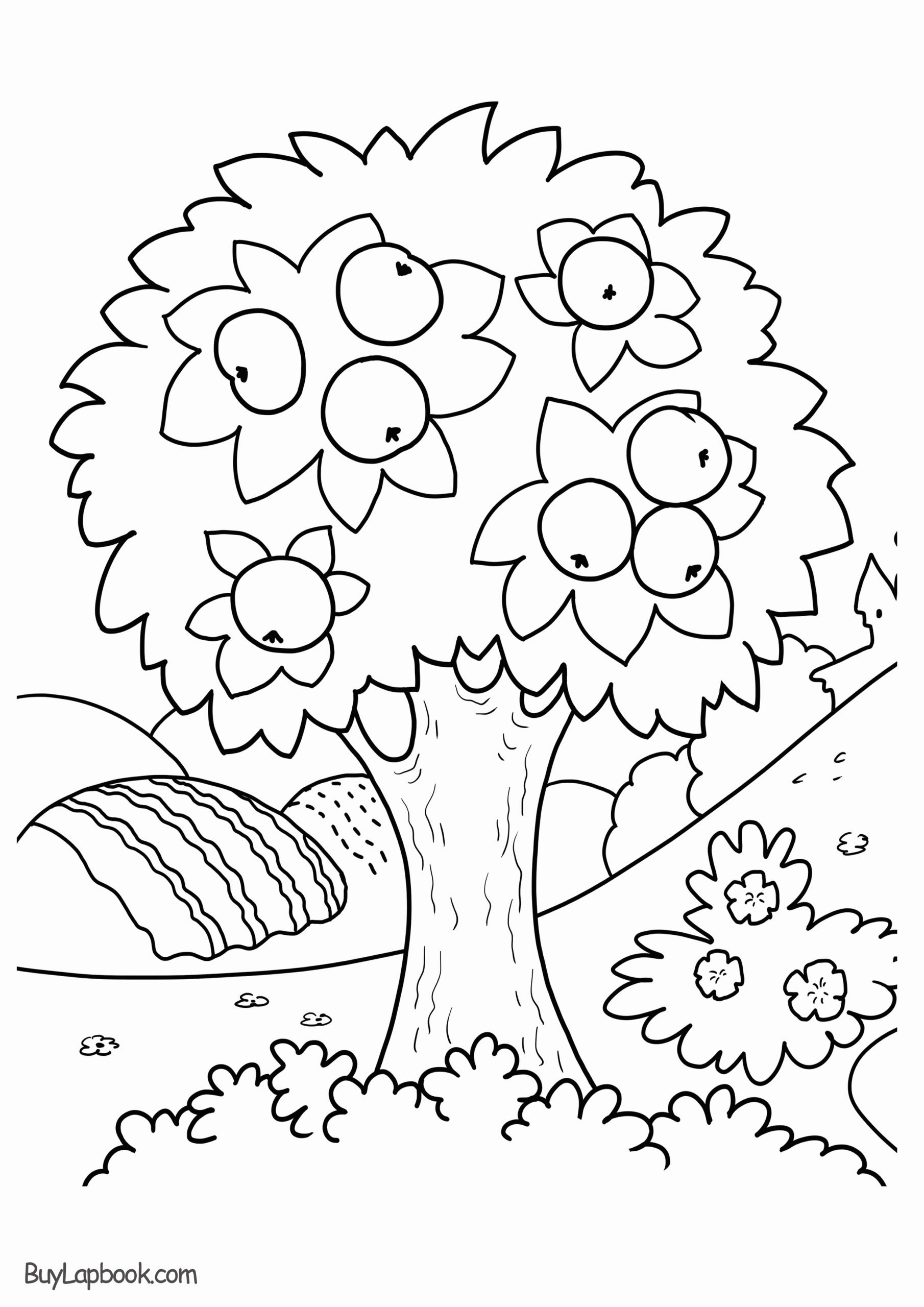 Tree Coloring Worksheets for Preschoolers top Apple Tree Coloring Page Free Printable – Buylapbook