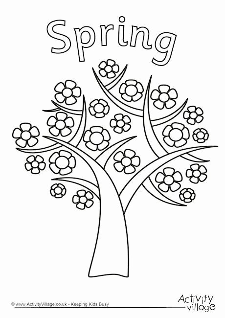 Tree Coloring Worksheets for Preschoolers top Spring Tree Colouring Page