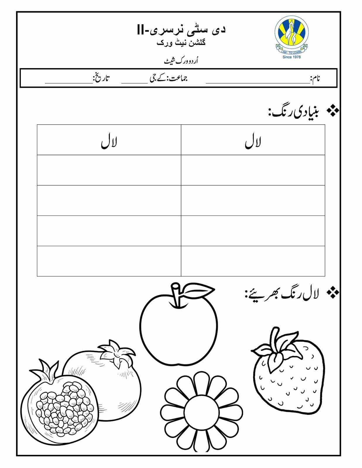 Urdu Worksheets for Preschoolers Lovely the City School Worksheets Urdu Printable and Percentage for