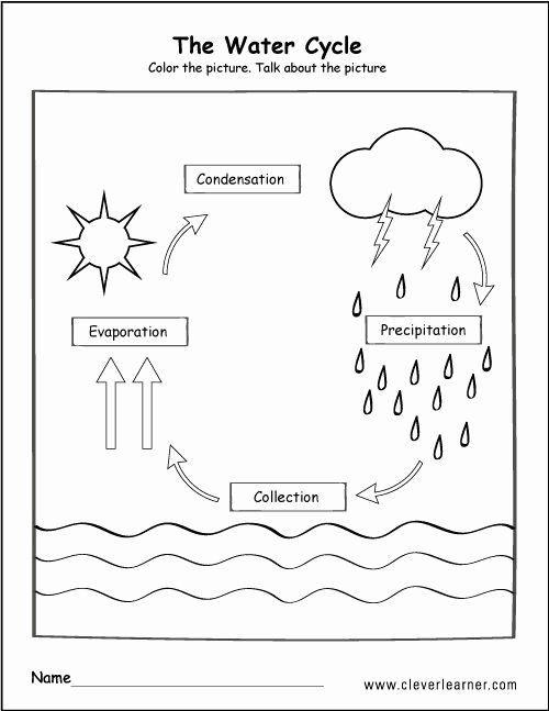 Uses Of Water Worksheets for Preschoolers Fresh Pin by Kenna Y On Science In 2020