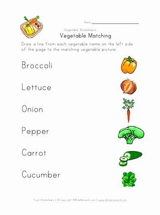 Vegetables Worksheets for Preschoolers Inspirational Ve Able Matching Worksheet