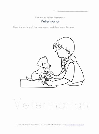 Veterinarian Worksheets for Preschoolers New Veterinarian Worksheet