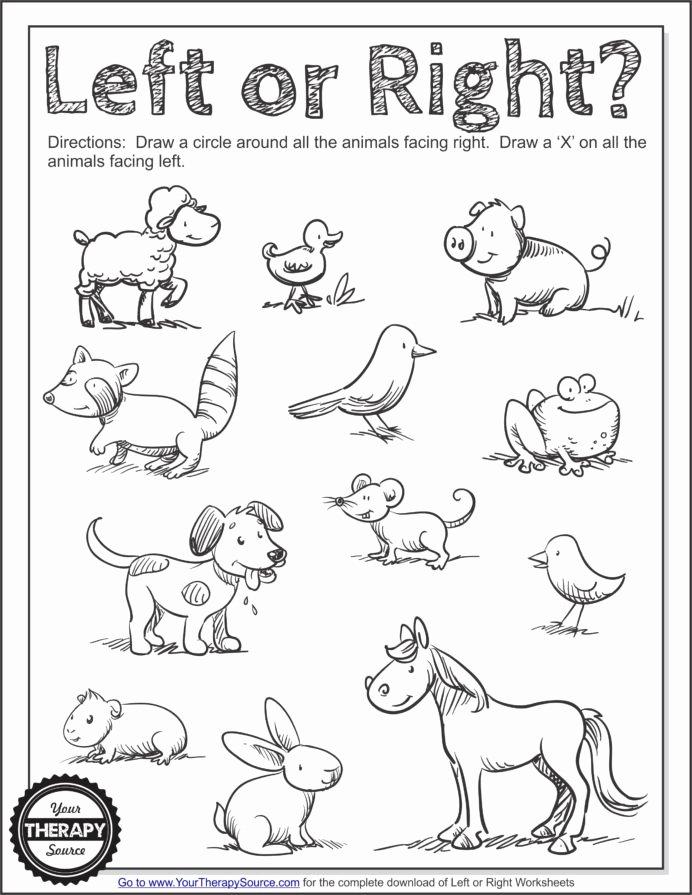Visual Discrimination Worksheets for Preschoolers Kids Summer Visual Discrimination Worksheet Coloring Printable