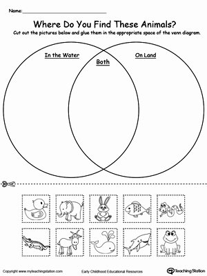 Water Worksheets for Preschoolers Inspirational Venn Diagram Animals In Water and Land