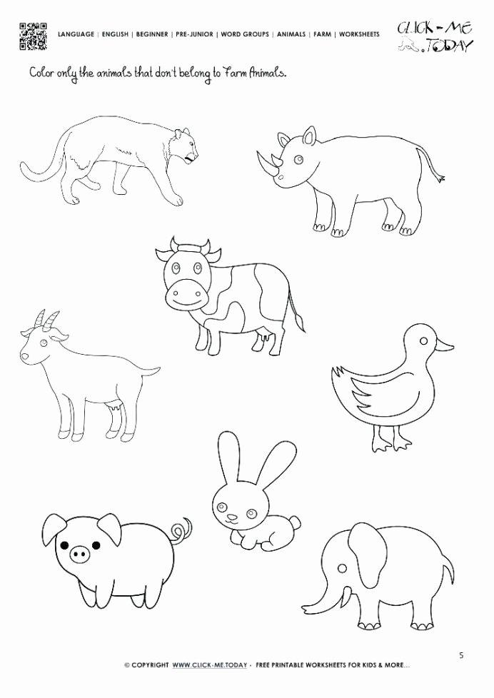 Wild Animal Worksheets for Preschoolers Best Of Farm Animals Worksheets for Kindergarten Worksheets Think