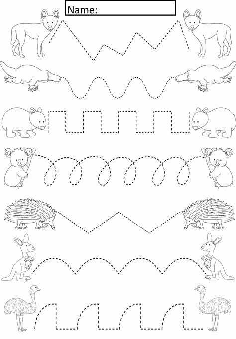 Worksheets for Preschoolers Australia Inspirational Australian Animals Tracing Lines Activity for Early Years