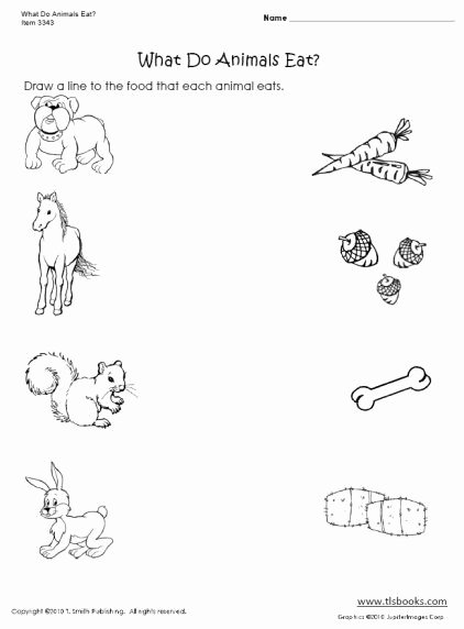 Worksheets for Preschoolers On Animals Printable What Do Animals Eat