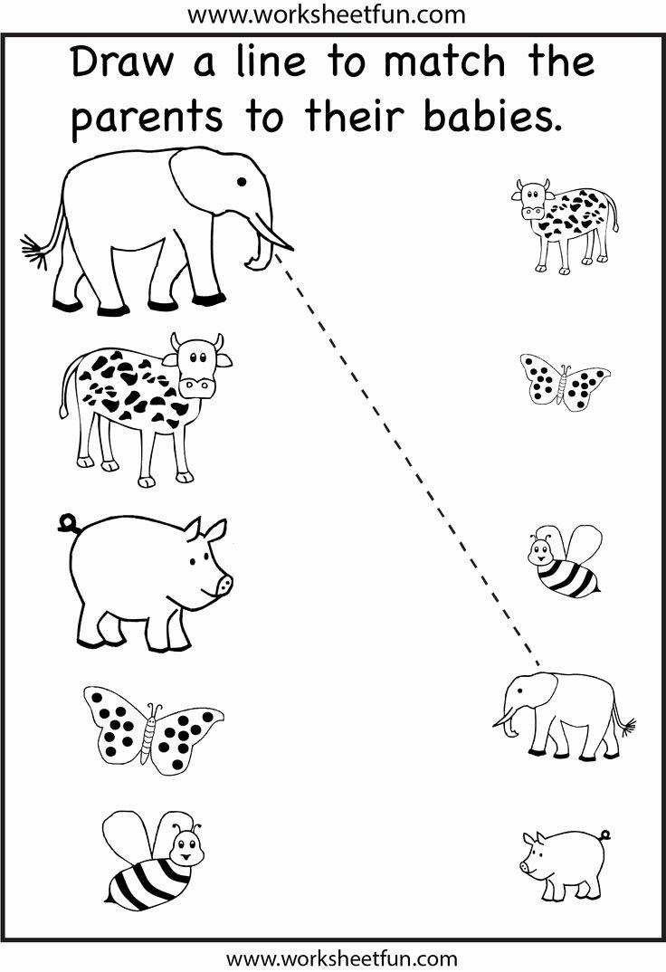 Worksheets for Preschoolers On Animals top Worksheet Preschool Matching Worksheet Crafts and