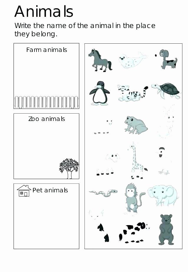 Worksheets for Preschoolers On Animals top Zoo Worksheets Kindergarten – Keepyourheadup