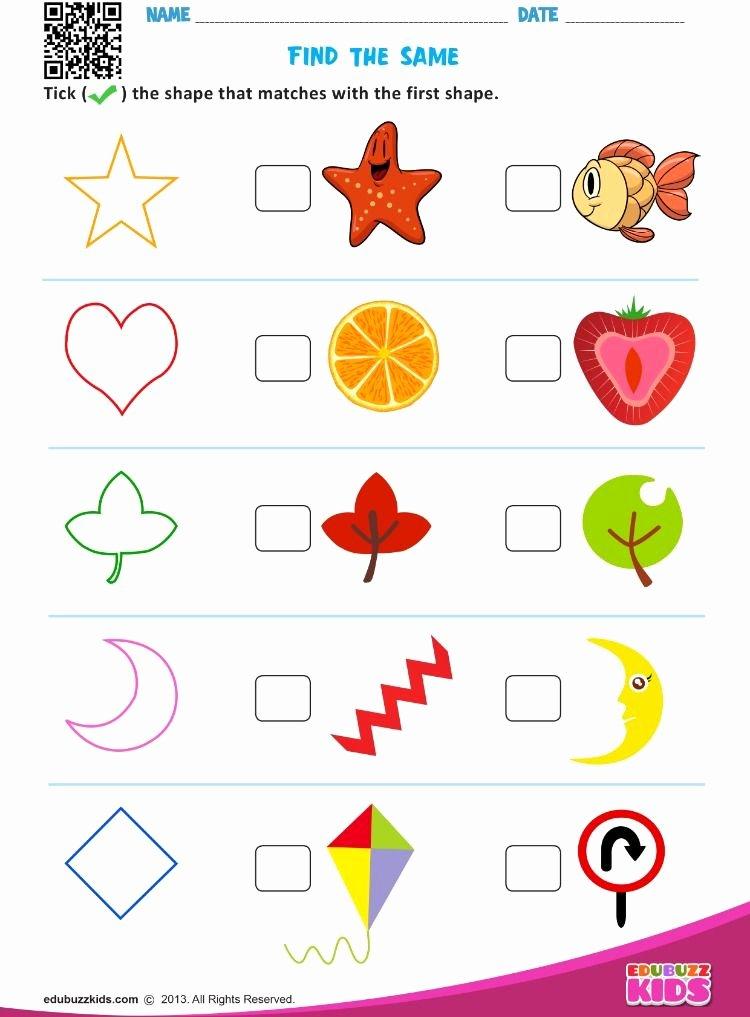 Worksheets for Preschoolers Online Fresh Find the Same