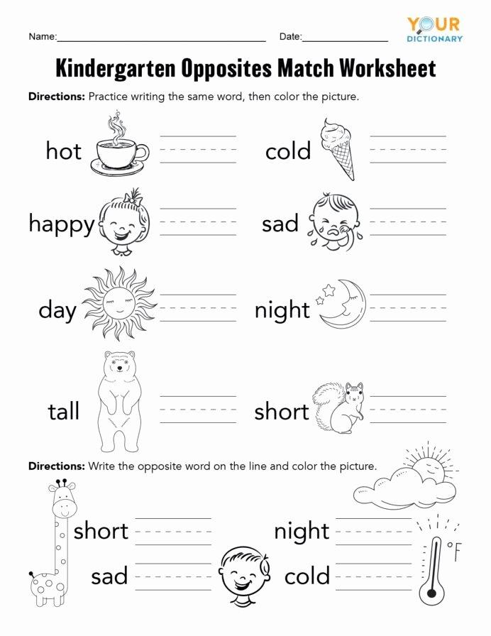 Worksheets for Preschoolers Opposites Ideas Kindergarten Opposites Activities Worksheets for Preschool