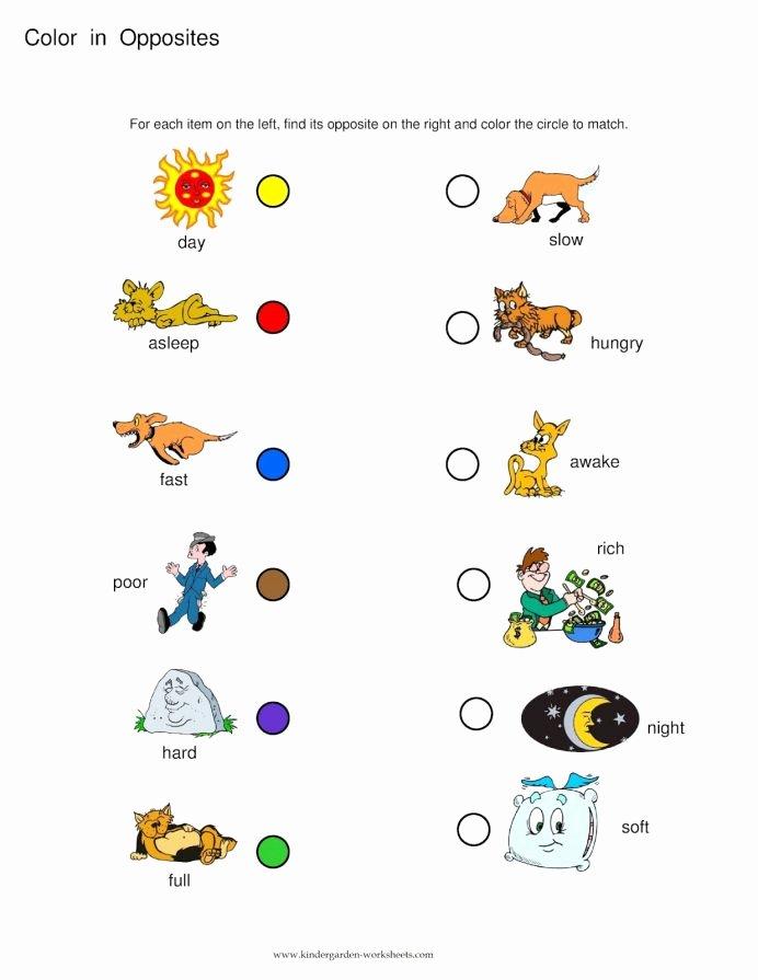 Worksheets for Preschoolers Opposites Kids Opposites Worksheets Preschool Opposite Words the
