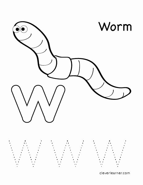 Worm Worksheets for Preschoolers Free W is for Worm Letter Worksheets for Preschool