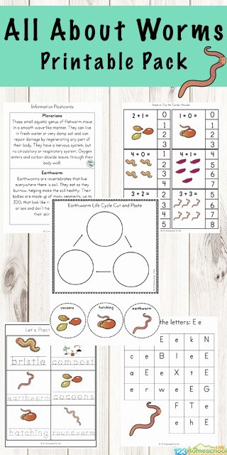 Worm Worksheets for Preschoolers Ideas Free Worm Worksheets