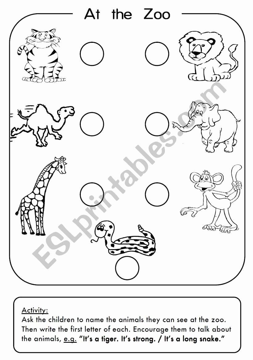 Zoo Animal Worksheets for Preschoolers Fresh Zoo Animals Esl Worksheet by 3mmm