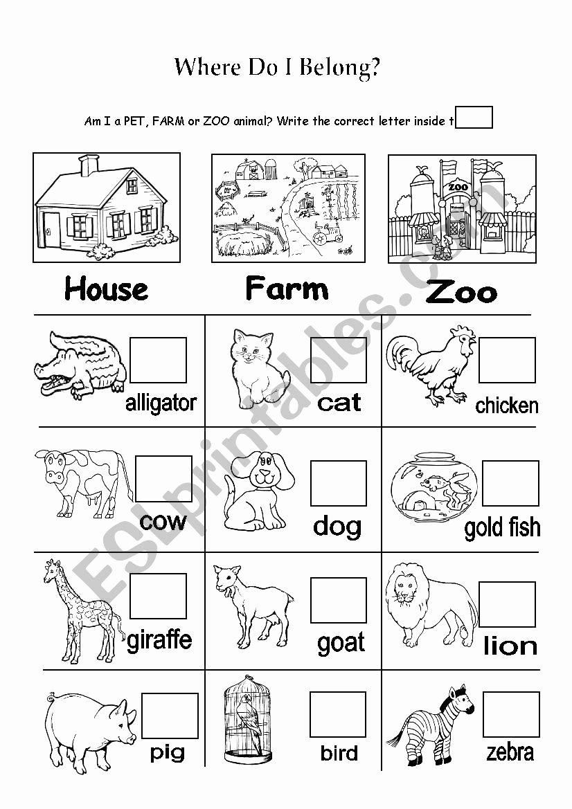 Zoo Animal Worksheets for Preschoolers Kids Pet Farm or Zoo Animals Esl Worksheet by Nainoche