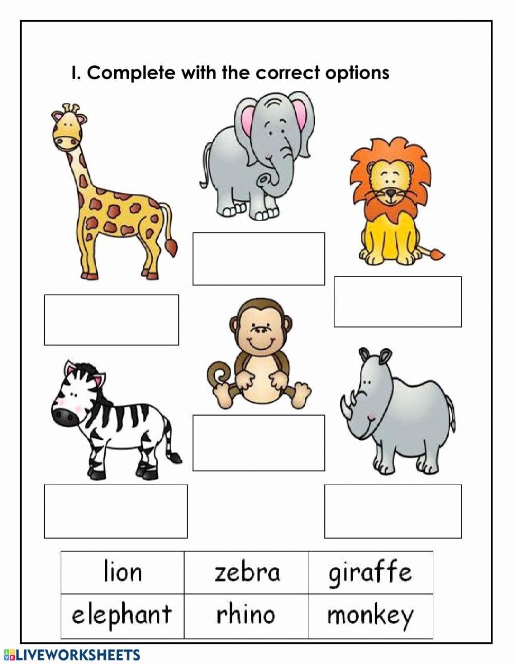 Zoo Animal Worksheets for Preschoolers New Zoo Animals Interactive Worksheet