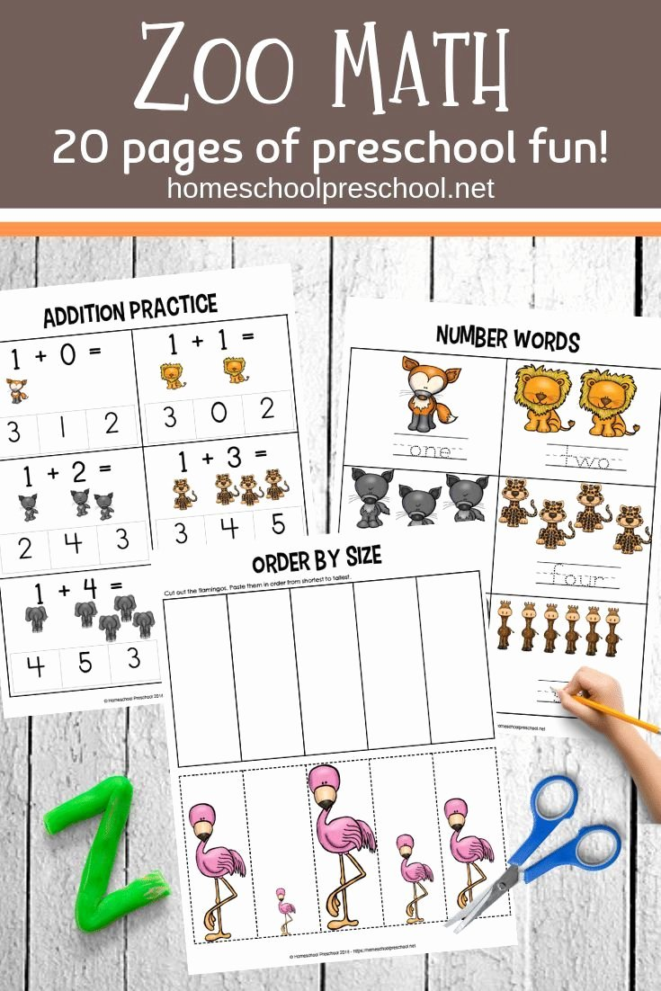 Zoo Math Worksheets for Preschoolers Kids Free Printable Zoo Math Worksheets for Preschoolers