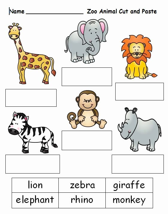 Zoo themed Worksheets for Preschoolers Inspirational Pin On Ppcd