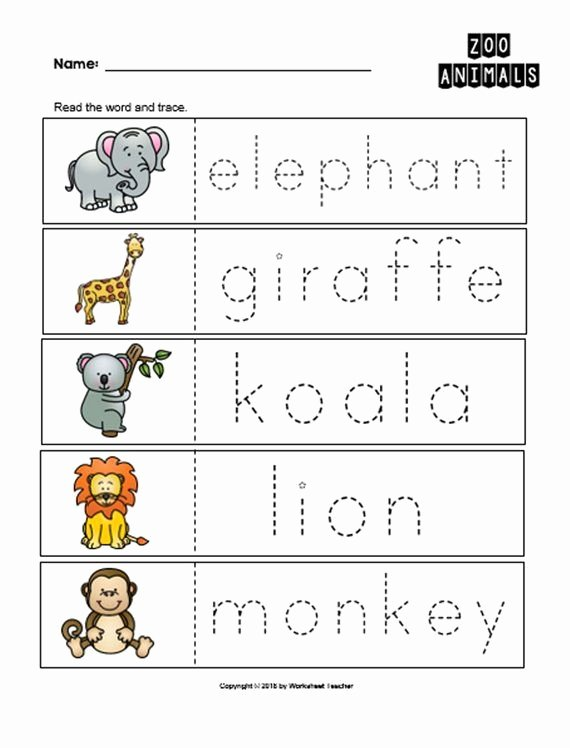Zoo themed Worksheets for Preschoolers Printable 10 Arctic Animals Preschool Curriculum Activities Preschool