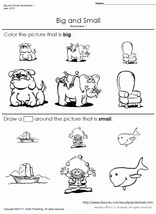 Worksheets for Preschoolers On Big and Small Ideas Big and Small Worksheets 1 and 2