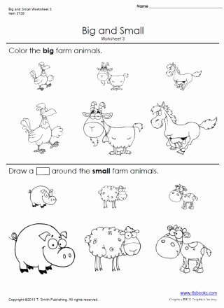 Worksheets for Preschoolers On Big and Small Ideas Big and Small Worksheets 3 and 4
