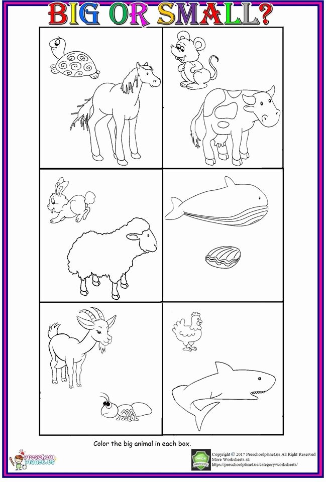 Worksheets for Preschoolers On Big and Small Printable Big or Small Worksheet for Kids – Preschoolplanet