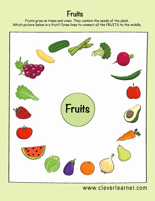 Worksheets for Preschoolers On Fruits and Vegetables Kids Fruits and Ve Ables Preschool Worksheets