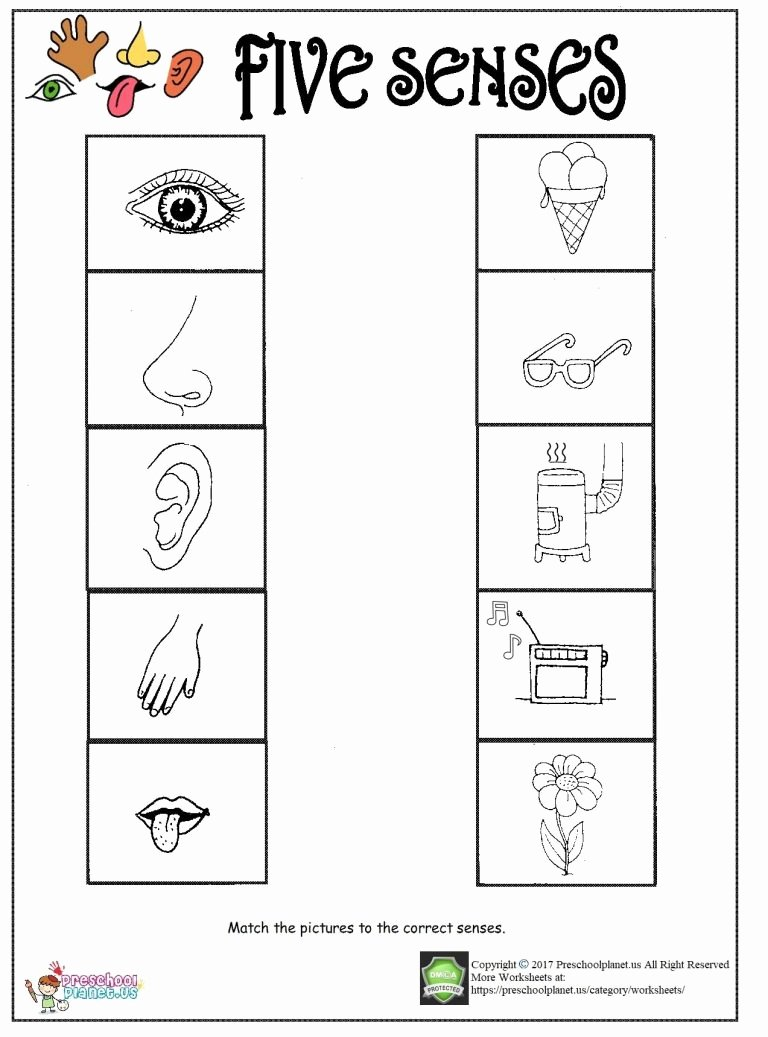 Printable five senses worksheet 768x1037